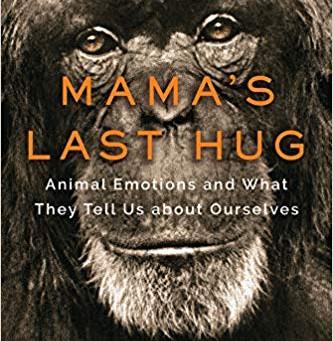 Compelling Reading: Mama's Last Hug