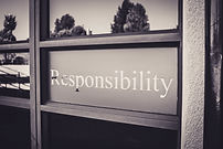 Our values-Responsibility for self and community