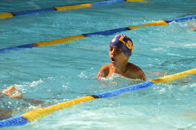 Swimming Gala-Fun for all grades. Which house won?