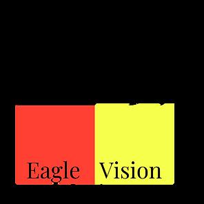eagle vision 1.png