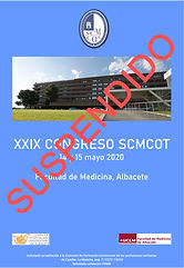 XXIX%20congreso%20portada_edited.jpg