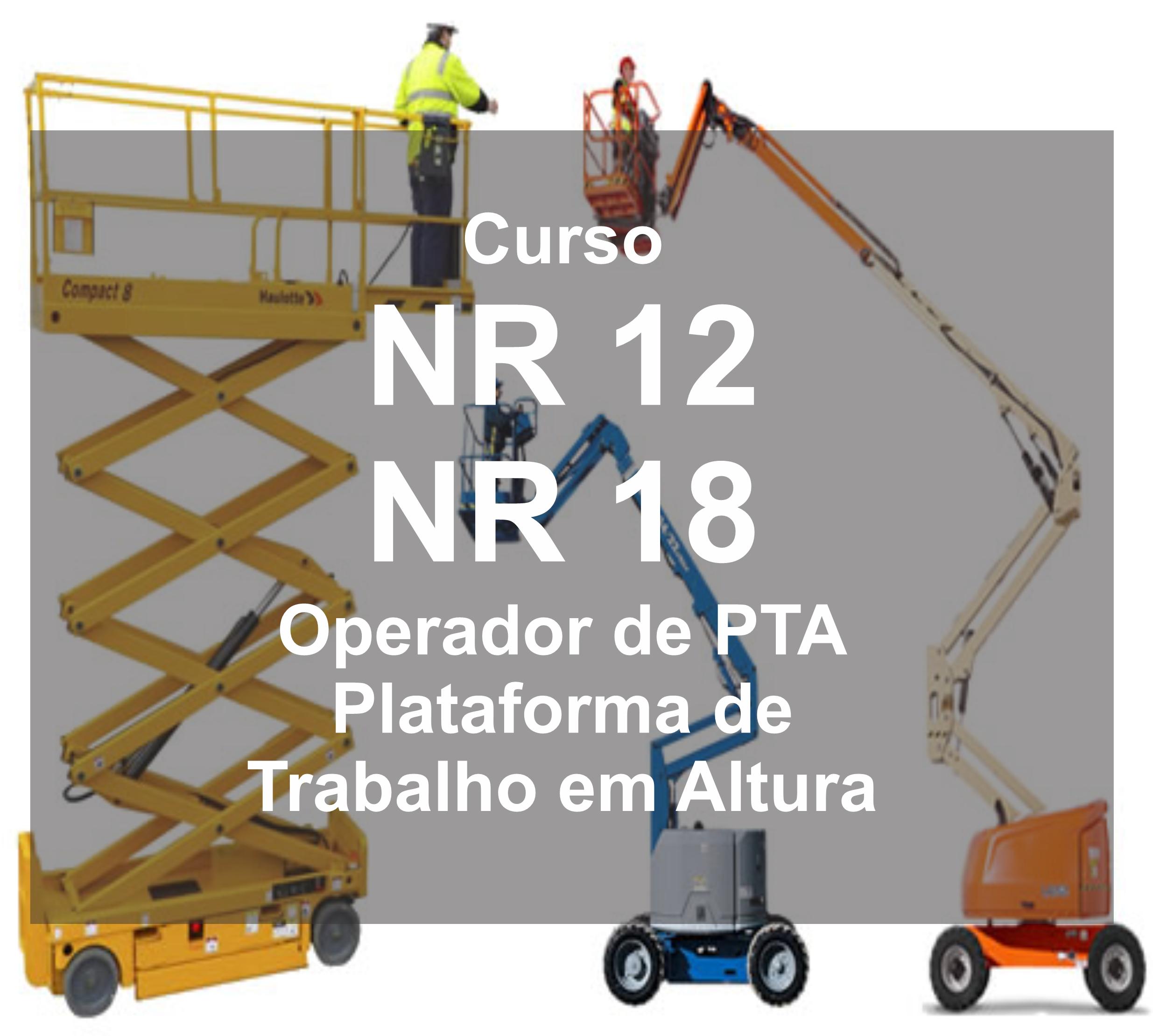 NR 12 18 PTA