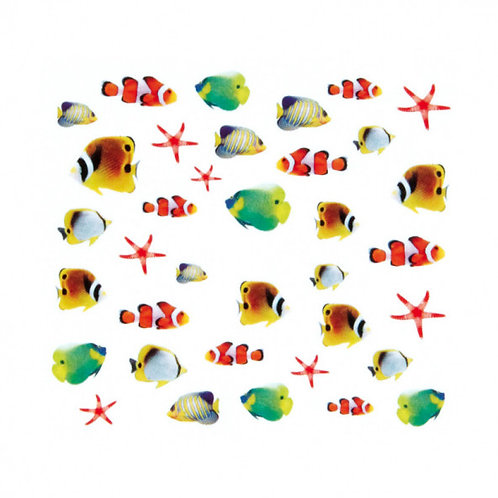 Water Decals, peces variados