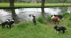 River play
