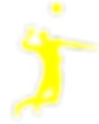 Волейтбол-11.png