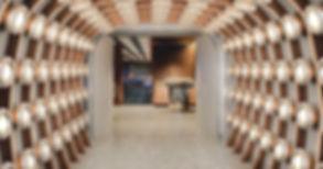Website-Virgin Voyages Pink Agave Mexica