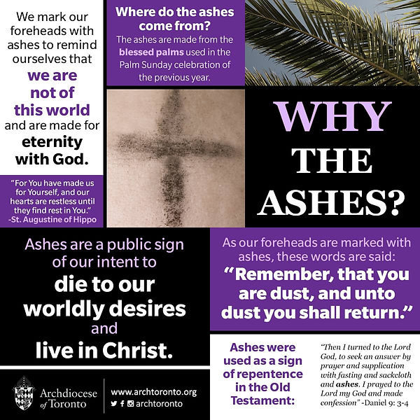 why the ashes.jpg