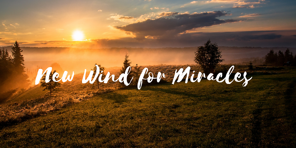 OKINAWA: NEW WINDS OF MIRACLES PART 7