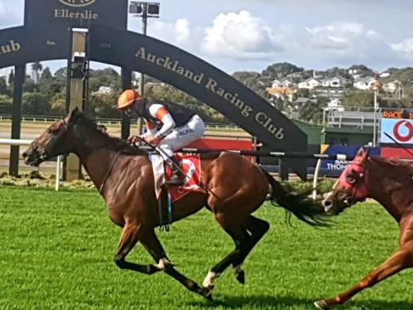 @ppracingtips - NZ Derby