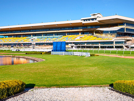 @ppracingtips - Race of the Day 24/07