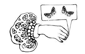 handbubblemoth.jpg