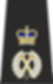 100px-Met_Assistant_Commissioner_Epaulet