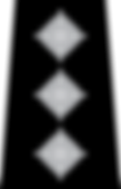 Chief_Inspector_Epaulette.svg.png