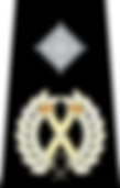 Deputy_Chief_Constable_Epaulette.svg.png
