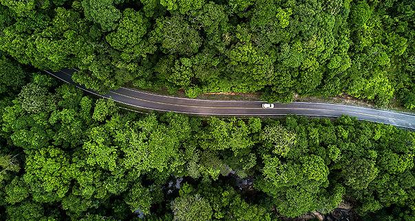 Better World Driving Green.jpg
