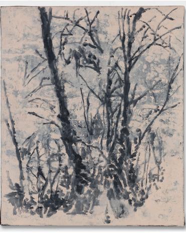 Árvore #1, 2019