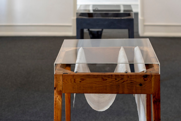 "View of the exhibition ""With a Handful of Dust"" by Rita Gaspar Vieira, 2020. © Eduardo Sousa Ribeiro, 2020"