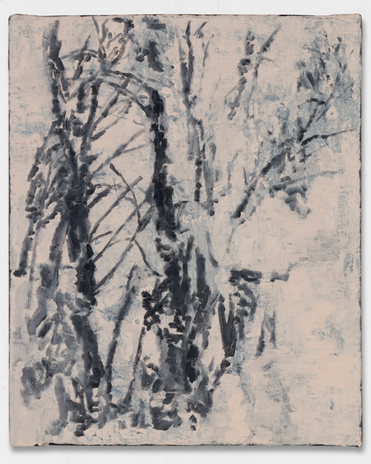Árvore #6, 2019
