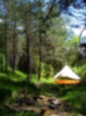 campement_bushcraft_vie_sauvage_nature_u