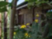 o saveur de l'instant écolieu bourgogne stages ateliers yoga plantes sauvages