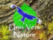 unisversnature stage cuisine plantes sauvages, buschcraft, vie et survie