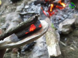 Bushcraft et survie en nature