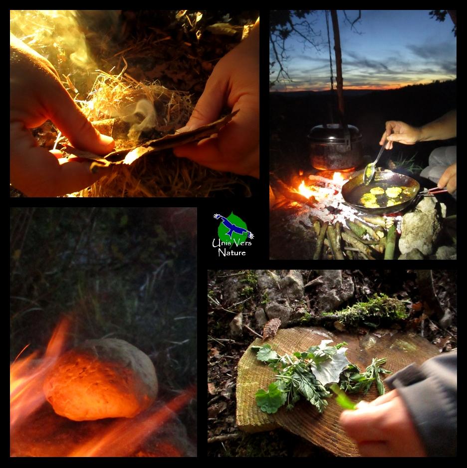 Cuisiner les plantes sauvages et recettes de bivouac