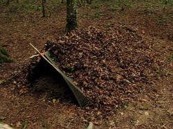 Poncho et feuilles mortes