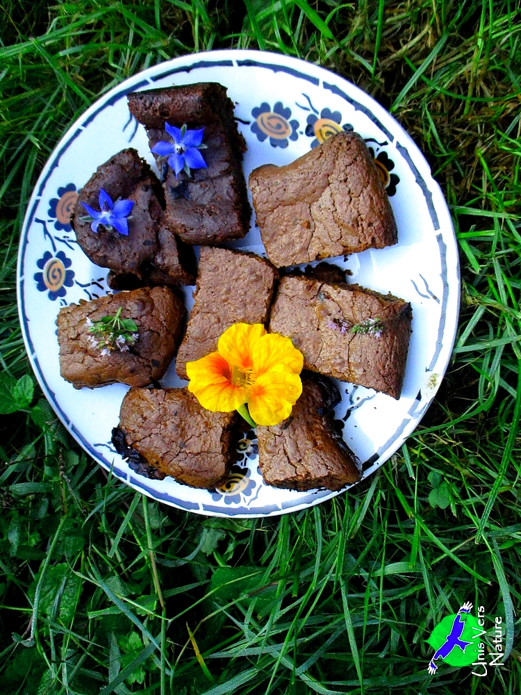 brownie sauvages