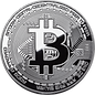 Bitcoin Cryptocurrency Dominatrix Domina Mistress BDSM Goddess Priestess Elite Erotic High Class Private Jet Findom Financial Dominaton Huma ATM