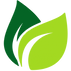 cropped-cropped-leaf-vector-2.png
