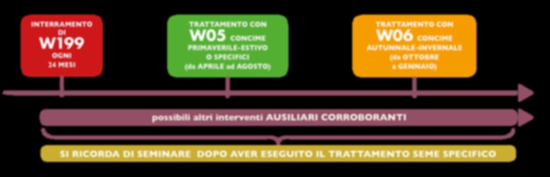 ITA_linea_del_tempo_2019.png