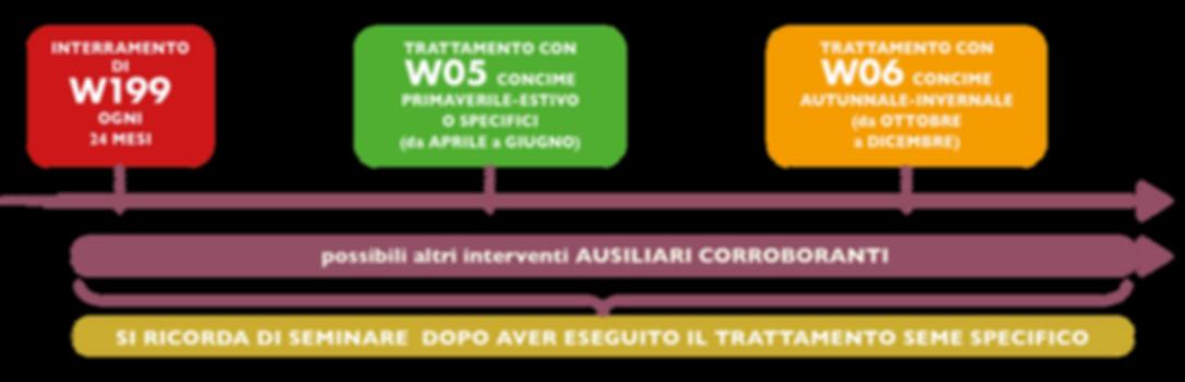 ITA_linea_del_tempo_2020.png