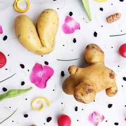 La cuisine des légumes moches