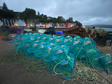 Crab_pots_in_the_harbour_with_evoke.jpg