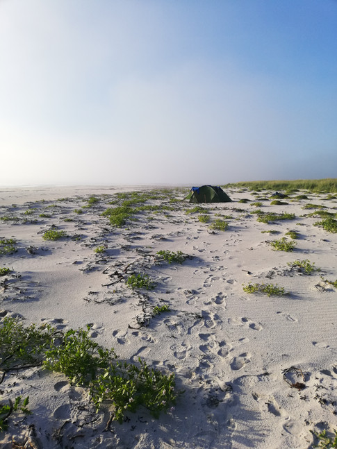 Lofoten - White Sandy Beaches Of The North Coast