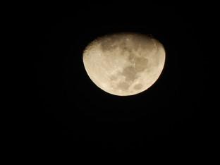 Лунный календарь, 7 -13  октября 2019