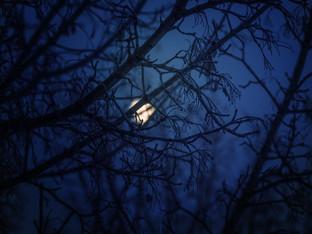 Лунный календарь на  февраль 2020 г.