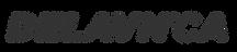 delavnica logo-01.png
