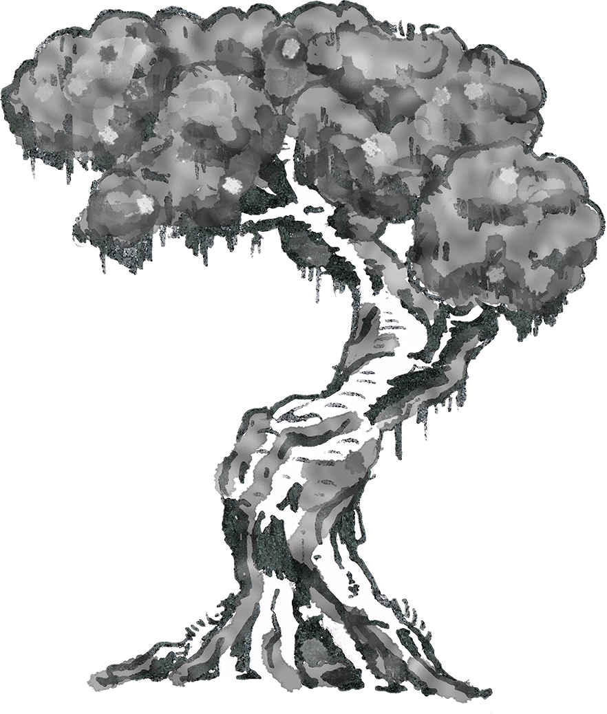 Water Colour Tree - iPad app