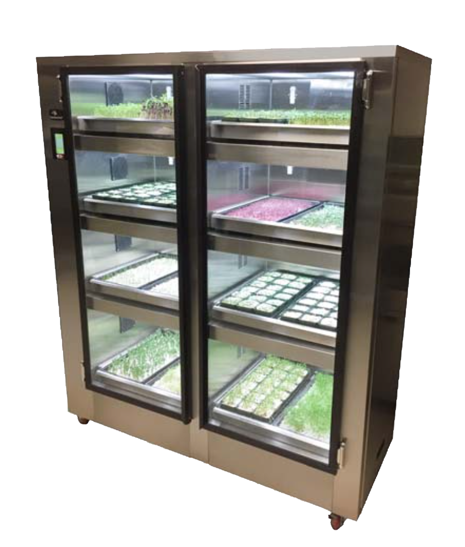 This system grow microgreens and leafy greens indoors