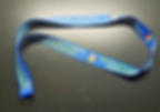 SCPSCA Lanyard.png
