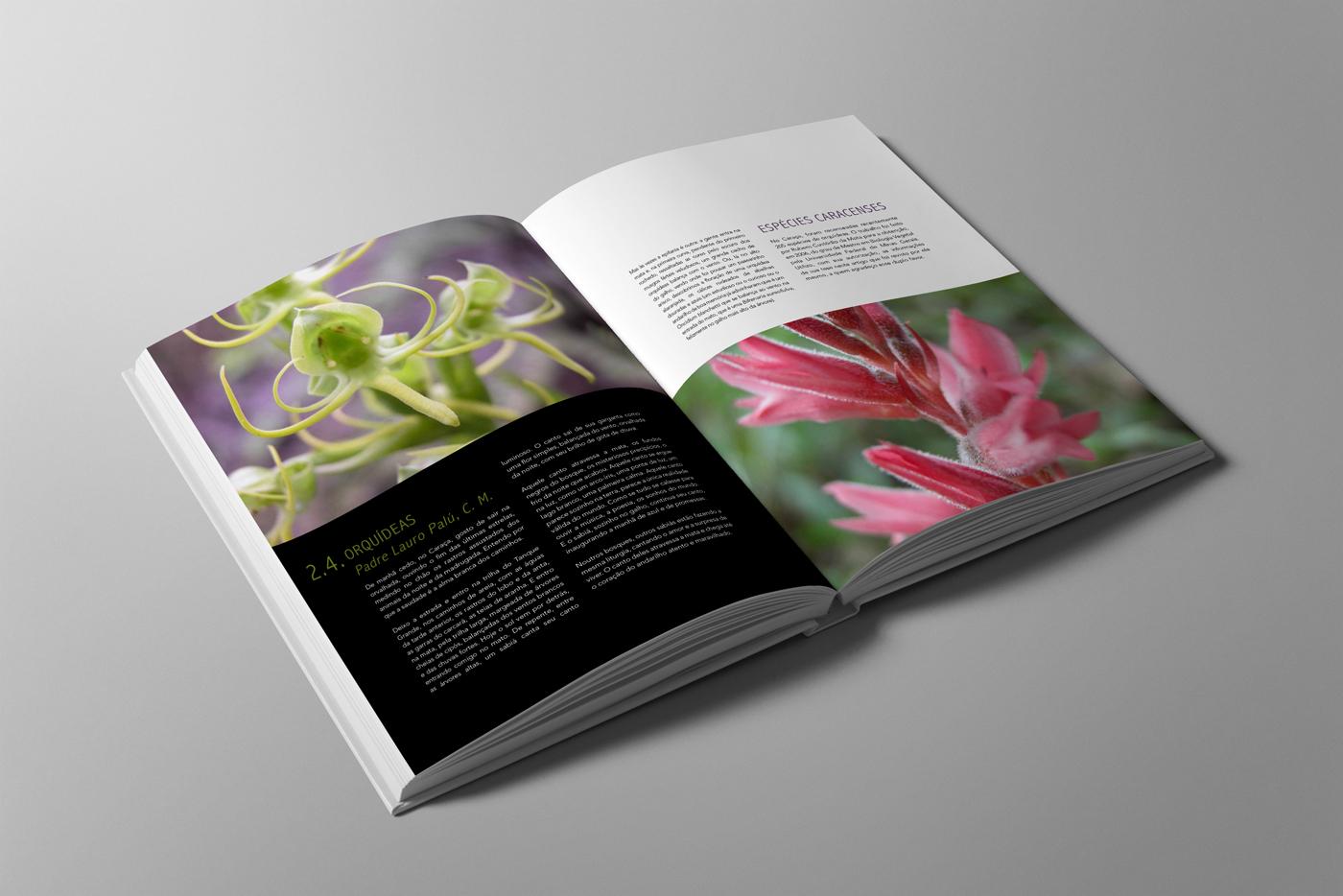 Livro-SerradoCaraca02.jpg