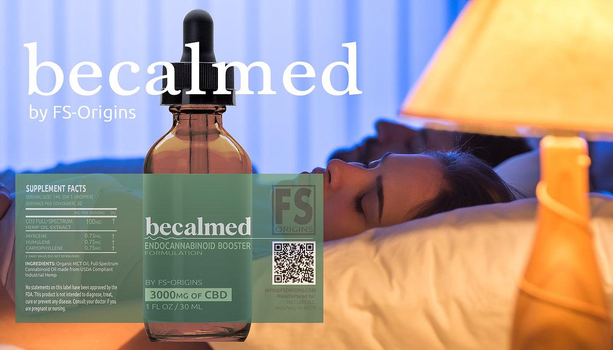 Becalmed Website .jpg