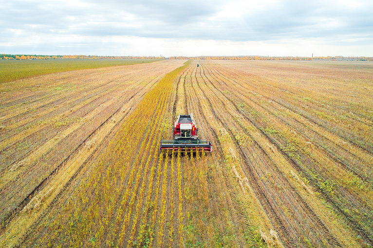 Harvester in the field. Aerial photograp