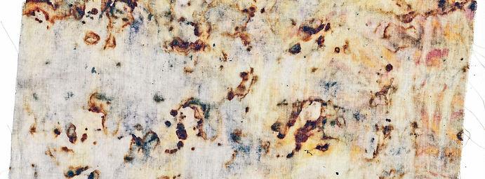 Eco Print Rust Orange Sari Silk on Organ