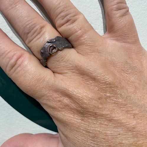 Time Travel ring
