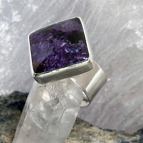 Violet Filter ring