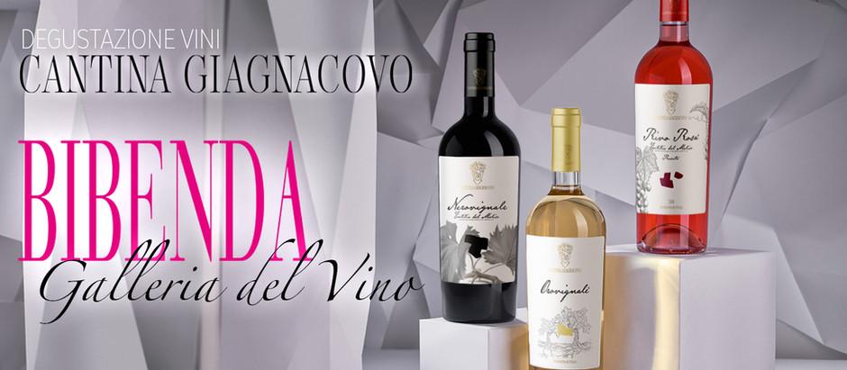 Degustazione Vini Cantina Giagnacovo