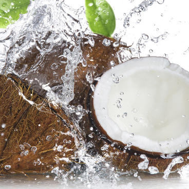 Coconut Water Canvas